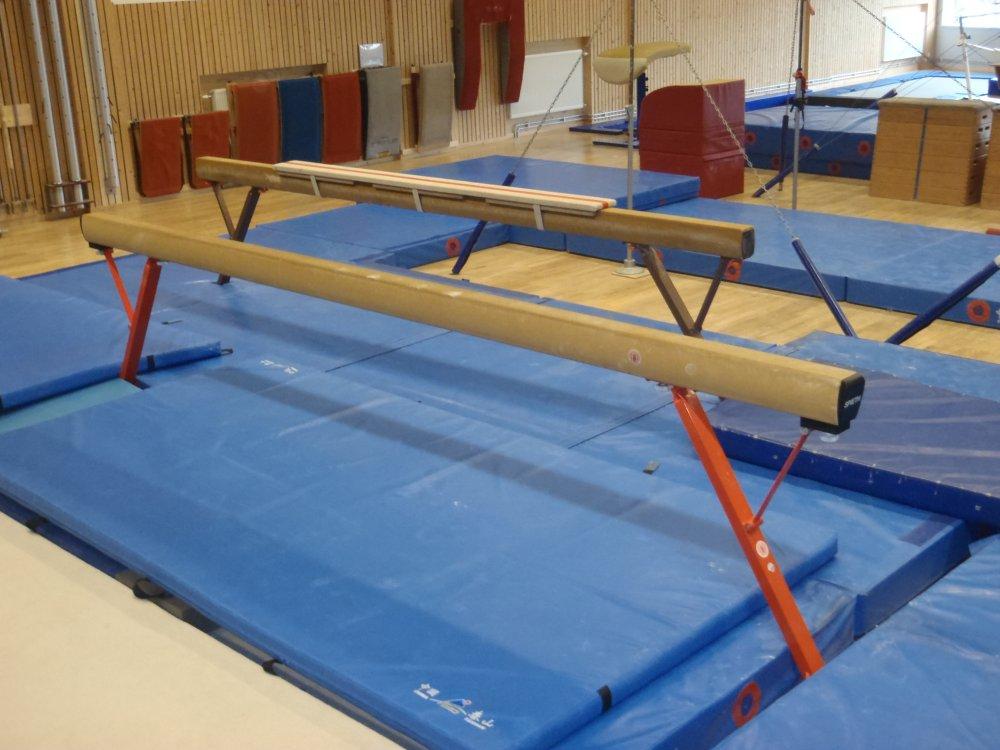 Gymnastikens Hus I Alings 229 S Female Artistic Gymnastics